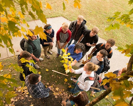 students in an outdoor tree lesson Hands on Learning